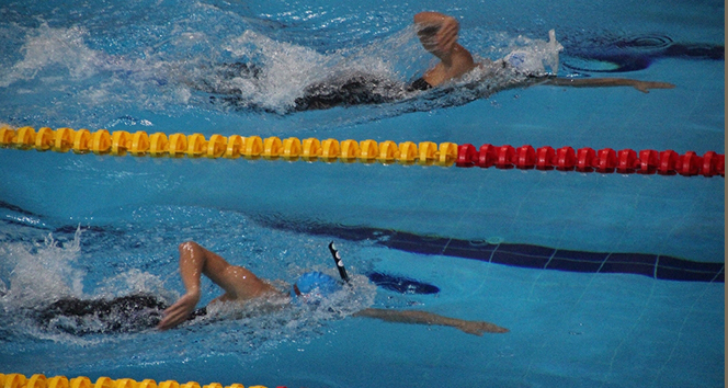 14 1dbd4ffd 6de2 471b 9b10 3b482a9116e5 - Paletli Yüzme Şampiyonası nda 16 Türkiye rekoru kırıldı