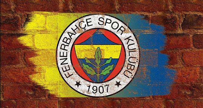 14 c19e2f81 a2da 446c 84dc 2c9682f57c44 - Fenerbahçe nin Avusturya kamp kadrosu belli oldu