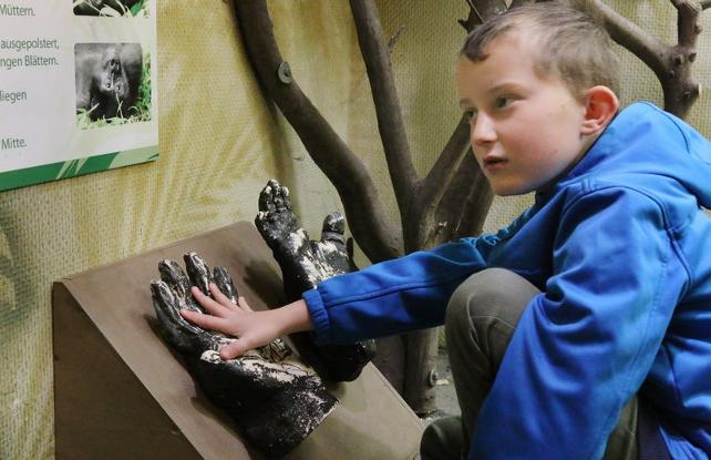 Almanya: Başarılı öğrencilere hayvanat bahçesi bedava