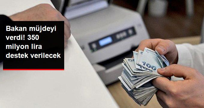 Bakan müjdeyi verdi! 350 milyon lira destek verilecek